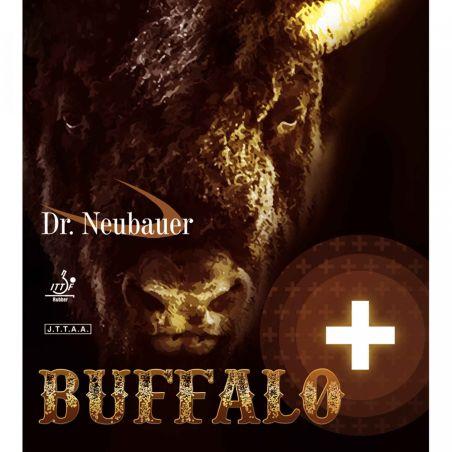 DR. Neubauer  Buffalo +